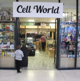 Shop 13 – Cell World
